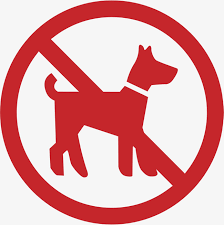 No dog allowed image red